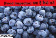 Food Inspector kaise bane