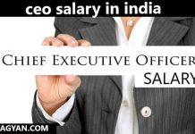 ceo salary in india