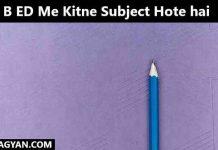 B ED Me Kitne Subject Hote hai